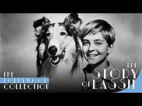 The Story Of Lassie - (Hollywood Biography)