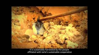 Amazonian clay - nature's most perfect ingredient