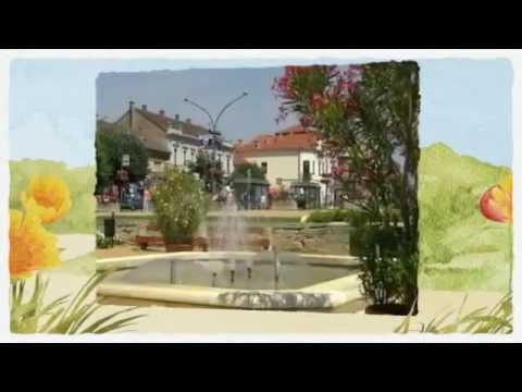 Sommer Urlaub in Ungarn (Plattensee- Balaton )Last minute Angebot DDS.Apartment