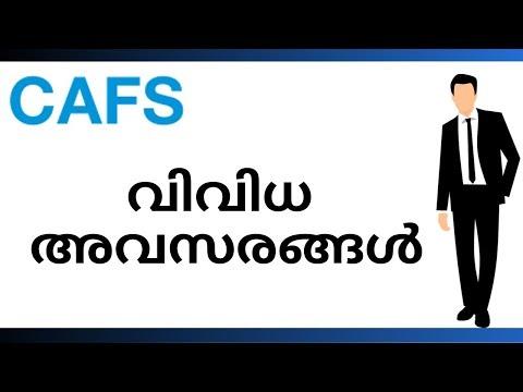 CAFS - ൽ  നിരവധി  അവസരങ്ങൾ | CAFS Vacancies | Kerala Job Vacancy