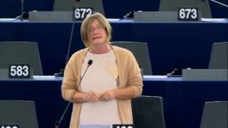 Felszólalás az EU belső biztonságáról szóló vitában – Strasbourg, 2016.10.25.