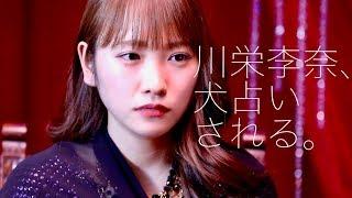 川栄李奈の犬占いの結果は?あの犬種!/ホットスタッフ・スペシャルWEB動画
