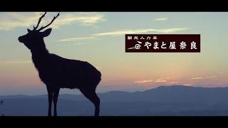 奈良観光人力車 やまと屋 プロモーションビデオ