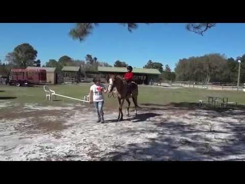 Horseback riding Orlando Florida USA
