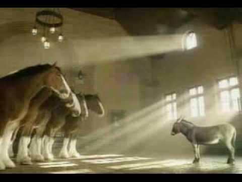Beer Commercial Budweiser Clydesdale 2003 Superbowl donkey