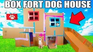 Video TWO STORY BOX FORT DOG HOUSE! 📦🐶 Elevator, Slide, Tv & More! MP3, 3GP, MP4, WEBM, AVI, FLV September 2018