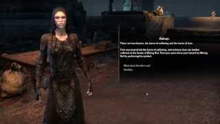 Doing the quest to become a vampire in Elder Scrolls Online, at lvl 13 (and with a try at lvl 10). There is now a lvl 5 sorc who did it. Only used quest gear...