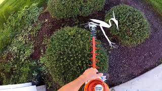 9. Stihl HS56c at it again Trimming Bushes