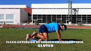 Flexo - Extensión de cadera en cuadrupedia
