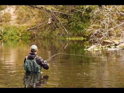 выбор забродников для рыбалки