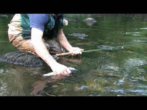 Pêche sur la rivière Dordogne