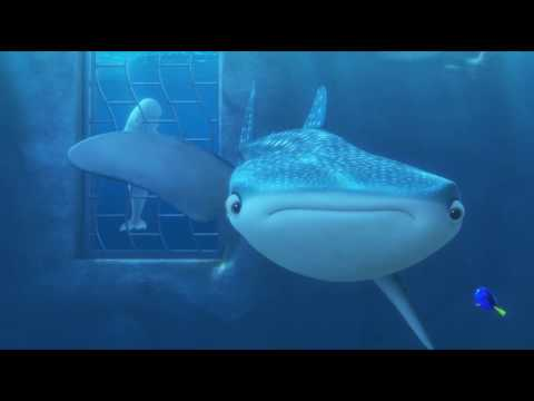 Video Finding Dory - Dory & Destiny First Encounter download in MP3, 3GP, MP4, WEBM, AVI, FLV January 2017