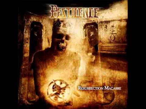 Tekst piosenki Pestilence - Hate Suicide po polsku