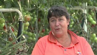 Seasonal Worker Program 2012: Benefits