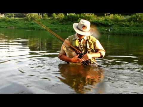 Fly Fishing For Carp Video