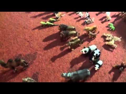 Our Schleich animals toy collection