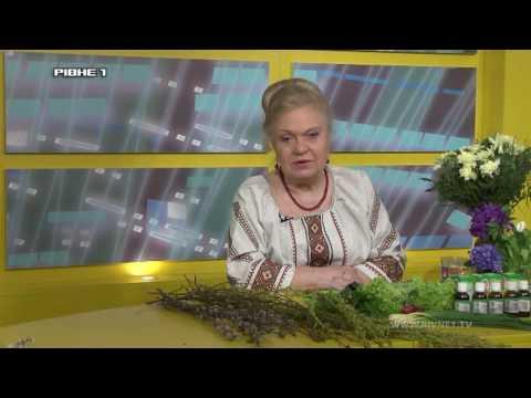 Наталія Земна про цілющі властивості верби