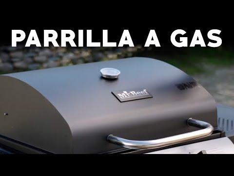 ¿Cómo preparar pollo y verduras en una parrilla a gas? | Profesor Klocker