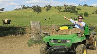 Orange Australia  city photos : wwoofing Orange - Australia 04/11/2014