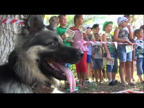 День Шахтера в Котельниково от ЕвроХим-ВолгаКалия
