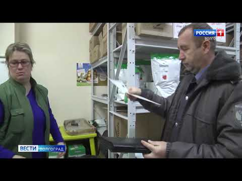 Управлением Россельхознадзора проведен досмотр импортного семенного материала, поступившего на территорию Волгоградской области