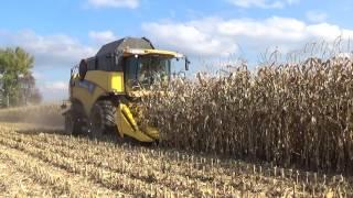 Video Pokazy zbioru poletek pokazowych  kukurydzy firmy Pioneer w  Gr. Matuszek MP3, 3GP, MP4, WEBM, AVI, FLV November 2017