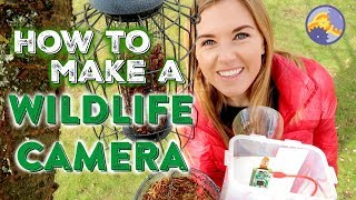How to make a Wildlife Camera (using a Raspberry Pi!) | Maddie Moate