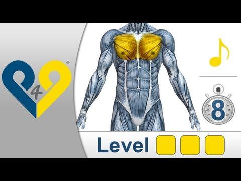 Большая грудная мышца приводит и пронирует