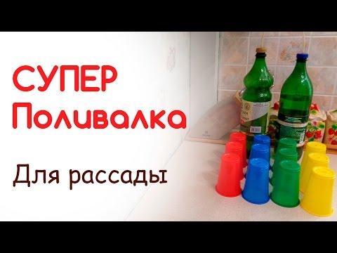 Как из пластиковой бутылки сделать поливалку для цветов