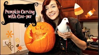 CARVING MY PIGEON INTO A PUMPKIN | Pumpkin Carving w/ Coo-per by Maddie Smith