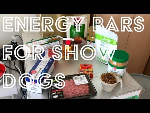 Energy Bars For Show Dogs