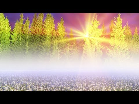 "Peaceful Music, Relaxing Music, Instrumental Music ""Nature"