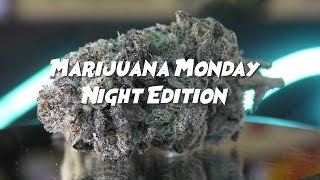 Marijuana Monday  NIGHT EDITION - GORILLA GLUE #4 & PRE98 BUBBA by Urban Grower