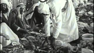 Old United Arab Emirates , How Oil found and how they Progressed !