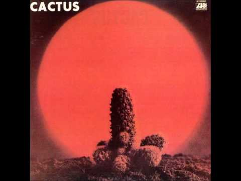 Tekst piosenki Cactus - You Can't Judge A Book By The Cover po polsku