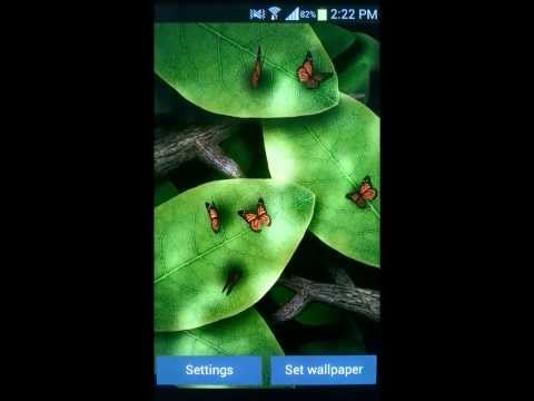 Video of Tap Leaves Free Live Wallpaper