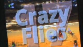 Crazy Flies LiveWallpaper Free YouTube video