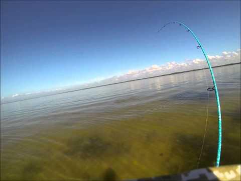 Redfish fishing – Feb 2014