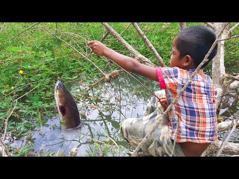 Video Amazing Smart Boy Goes Fishing To Survive by Himself - How to Fishing With Free Line Fishing download in MP3, 3GP, MP4, WEBM, AVI, FLV January 2017