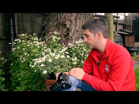Practical Photography's Camera School – Module 4: Outtakes