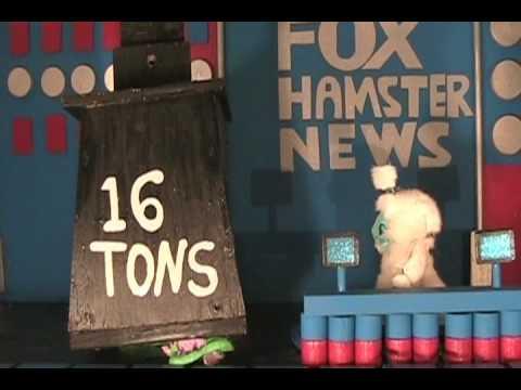 Fox News Hamster Bitch-Slaps Geico Lizard !!