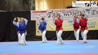 Taekwondo Demonstration Auckland by Official Korean Team 2016