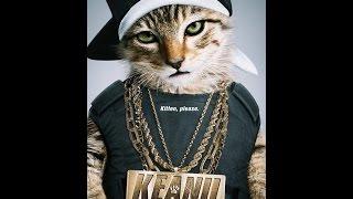 Nonton 키아누 (Keanu, 2016) 예고편 Film Subtitle Indonesia Streaming Movie Download