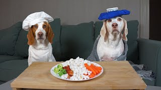 Dog Makes Food for Sick Friend: Chef Dog Potpie Cooks Maymo's Favorite Foods After Surgery! by Maymo