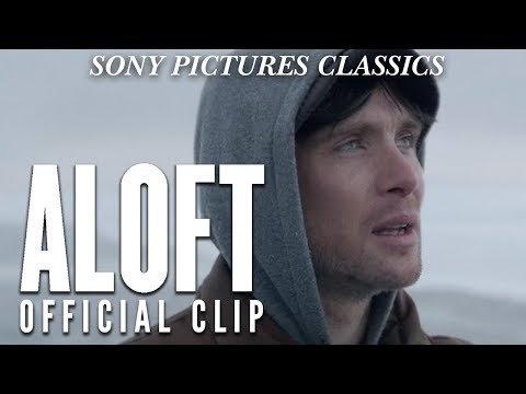 Aloft Clip 'Falconry'