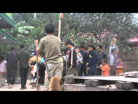 hmoob yaj lwm sub xyoo tshiab in laos