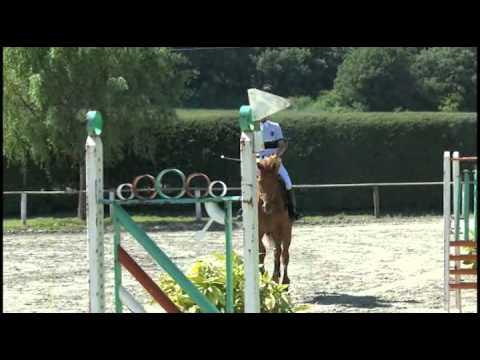 concurso saltos (1)