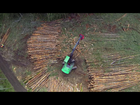 Waratah 622C 4x4 Harvester Head (видео)