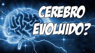 Sinestesia - Cérebro evoluído?