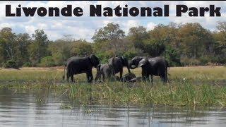 Video Boat Safari in Liwonde National Park, Malawi MP3, 3GP, MP4, WEBM, AVI, FLV Agustus 2019